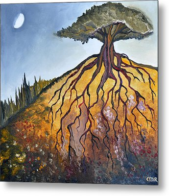 Deep Roots Metal Print by Cedar Lee