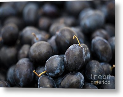 Deeply Damson Metal Print by Anne Gilbert