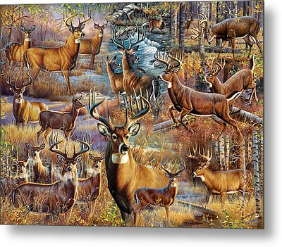 Deer Collage Metal Print by Cynthie Fisher