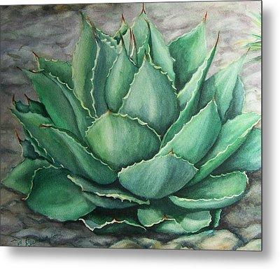 Desert Bloom Metal Print by Conni  Reinecke