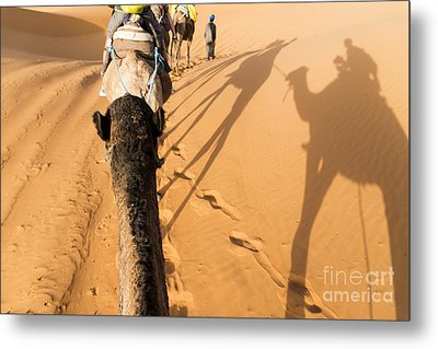 Desert Excursion Metal Print by Yuri Santin