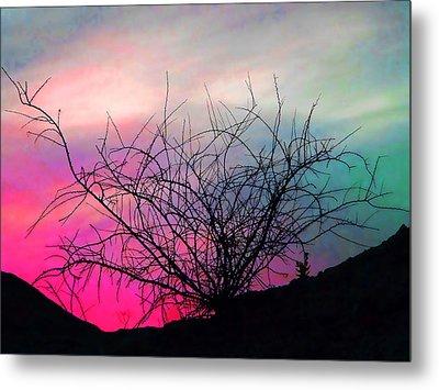 Desert Sunset Metal Print by Terril Heilman