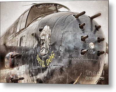 Devil Dog Metal Print by AK Photography
