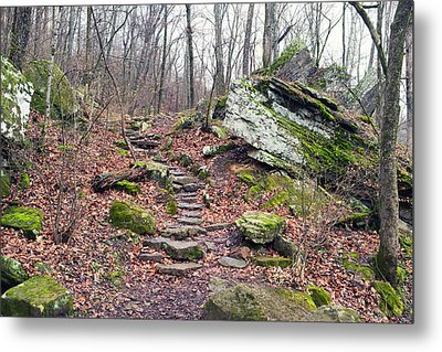Devil's Den Stone Stairs In Autumn Metal Print by Tanya Harrison