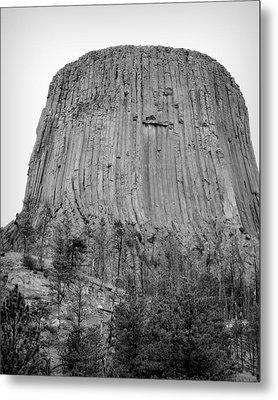 Devils Tower National Monument Bw Metal Print by Elizabeth Sullivan