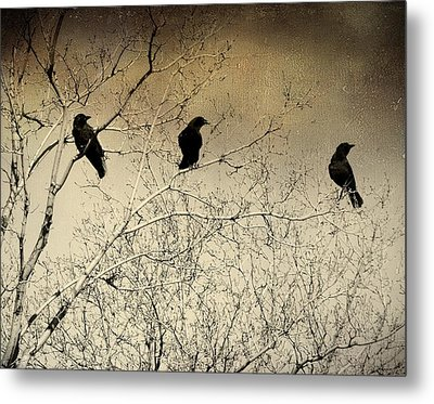 Did You See That Metal Print by Gothicrow Images