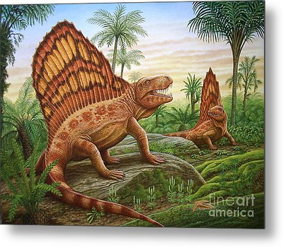 Dimetrodon Metal Print by Phil Wilson