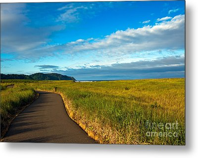 Discovery Trail Metal Print by Robert Bales