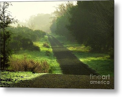 Do We Ever Really Know What Lies Ahead Metal Print by Ellen Cotton