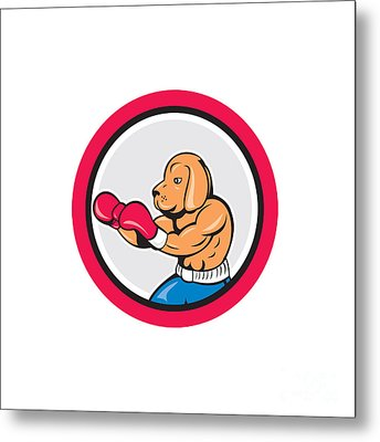 Dog Boxer Boxing Circle Cartoon Metal Print by Aloysius Patrimonio