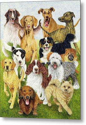 Dog Days Metal Print by Pat Scott