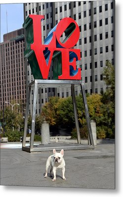 Dog Love Metal Print by Lisa Phillips