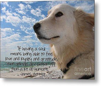 Doggie Soul Metal Print by Peggy J Hughes