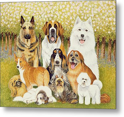 Dogs In May Metal Print by Pat Scott
