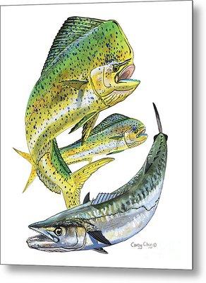 Dolphin Kingfish Metal Print by Carey Chen