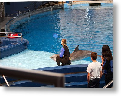 Dolphin Show - National Aquarium In Baltimore Md - 1212221 Metal Print by DC Photographer