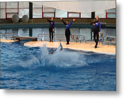 Dolphin Show - National Aquarium In Baltimore Md - 1212278 Metal Print by DC Photographer