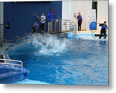 Dolphin Show - National Aquarium In Baltimore Md - 121293 Metal Print by DC Photographer