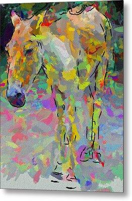 Donkey's Dreams Metal Print by Yury Malkov