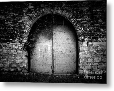 Doors To The Other Side Metal Print by Trish Mistric