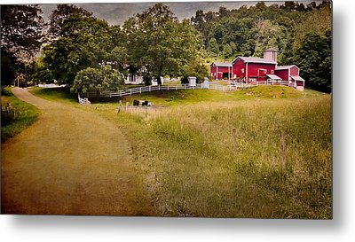 Down On The Farm Metal Print by Bill Wakeley