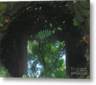 Down The Well Metal Print by Fred  Sheridan