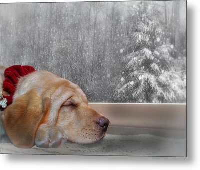 Dreamin' Of A White Christmas 2 Metal Print by Lori Deiter