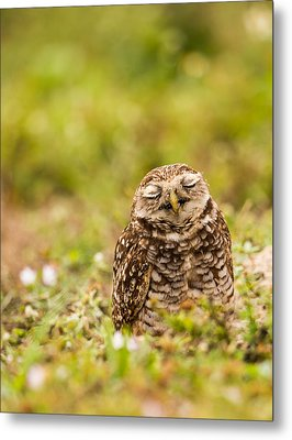 Dreamy Owl Metal Print by Andres Leon