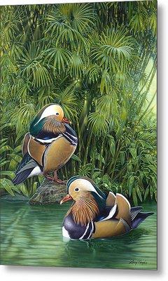 Ducks Metal Print by Larry Taugher