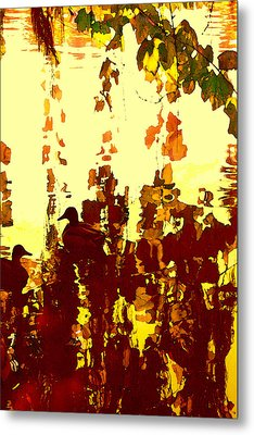 Ducks On Red Lake 2 Metal Print by Amy Vangsgard