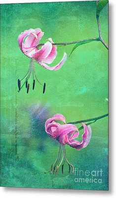 Duet - 9t01b Metal Print by Variance Collections