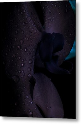 Each Droplet Contains A Wish Metal Print by Tara Miller