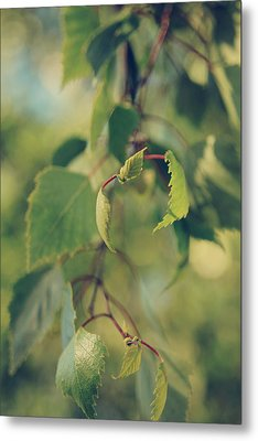 Each Sight Metal Print by Laurie Search