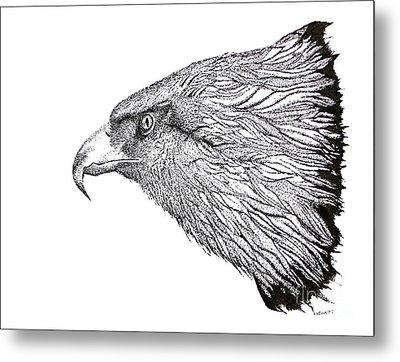 Eagle Head Drawing Metal Print by Mario Perez