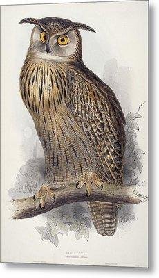 Eagle Owl.  Bubo Maximus Metal Print by Edward Lear
