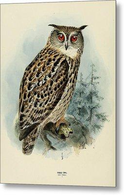 Eagle Owl Metal Print by J G Keulemans