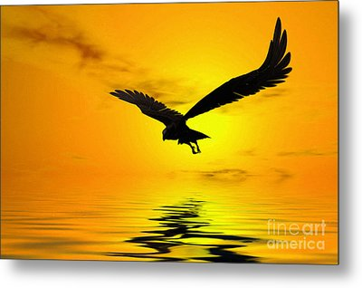 Eagle Sunset Metal Print by John Edwards