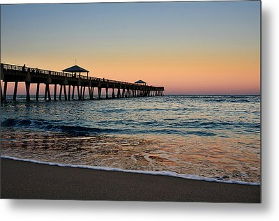 Early Birds Metal Print by Laura Fasulo