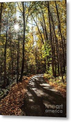 Early Fall On Roaring Fork Road Metal Print by Debbie Green
