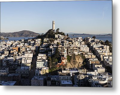 Early Morning Light On Telegraph Hill And Coit Tower Park In San Francisco Metal Print by Trekkerimages Photography
