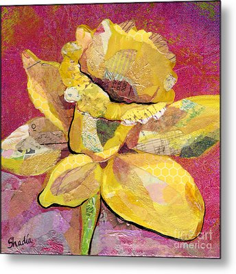 Early Spring IIi  Daffodil Series Metal Print by Shadia Zayed