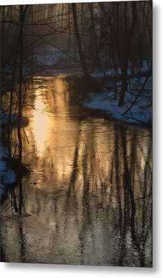 Early Winter Morning Metal Print by Karol Livote
