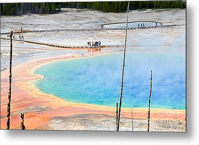 Earth Rainbow - Overhead View Of Grand Prismatic Spring In Yellowstone National Park.  Metal Print by Jamie Pham