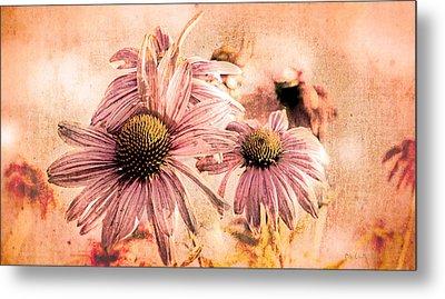 Echinacea Impressions  Metal Print by Bob Orsillo