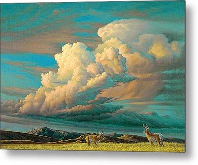 Edge Of The Prairie- Pronghorn Metal Print by Paul Krapf