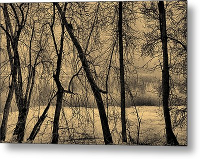 Edge Of Winter Metal Print by Bob Orsillo