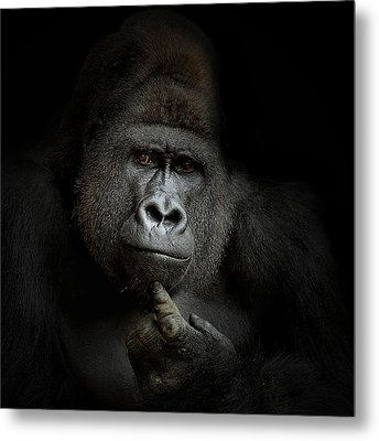 Ego Cogito, Ergo Sum Metal Print by Antje Wenner-braun