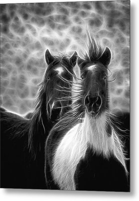 Electrified And Wild D8873 Metal Print by Wes and Dotty Weber