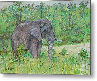Elephant At Kruger Metal Print by Caroline Street