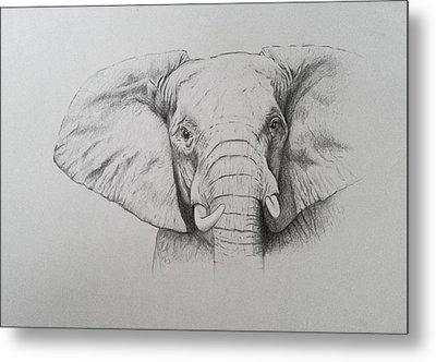Elephant Metal Print by Ele Grafton